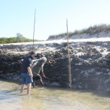 Mud Crabbing Monday