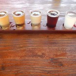 Matso's Craft Beer Tasting Selection